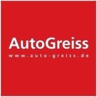 Auto-Greiss_small_200128