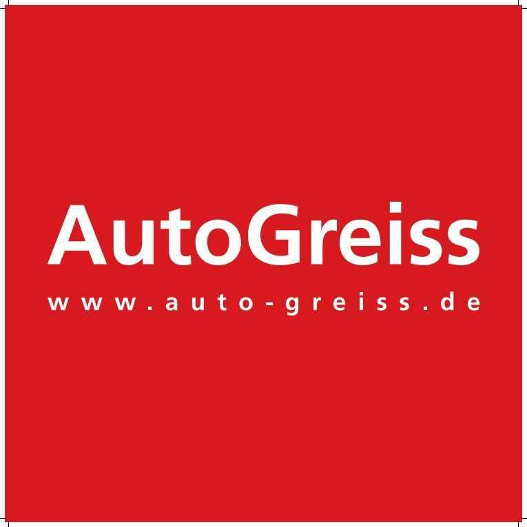 Auto-Greiss-191030